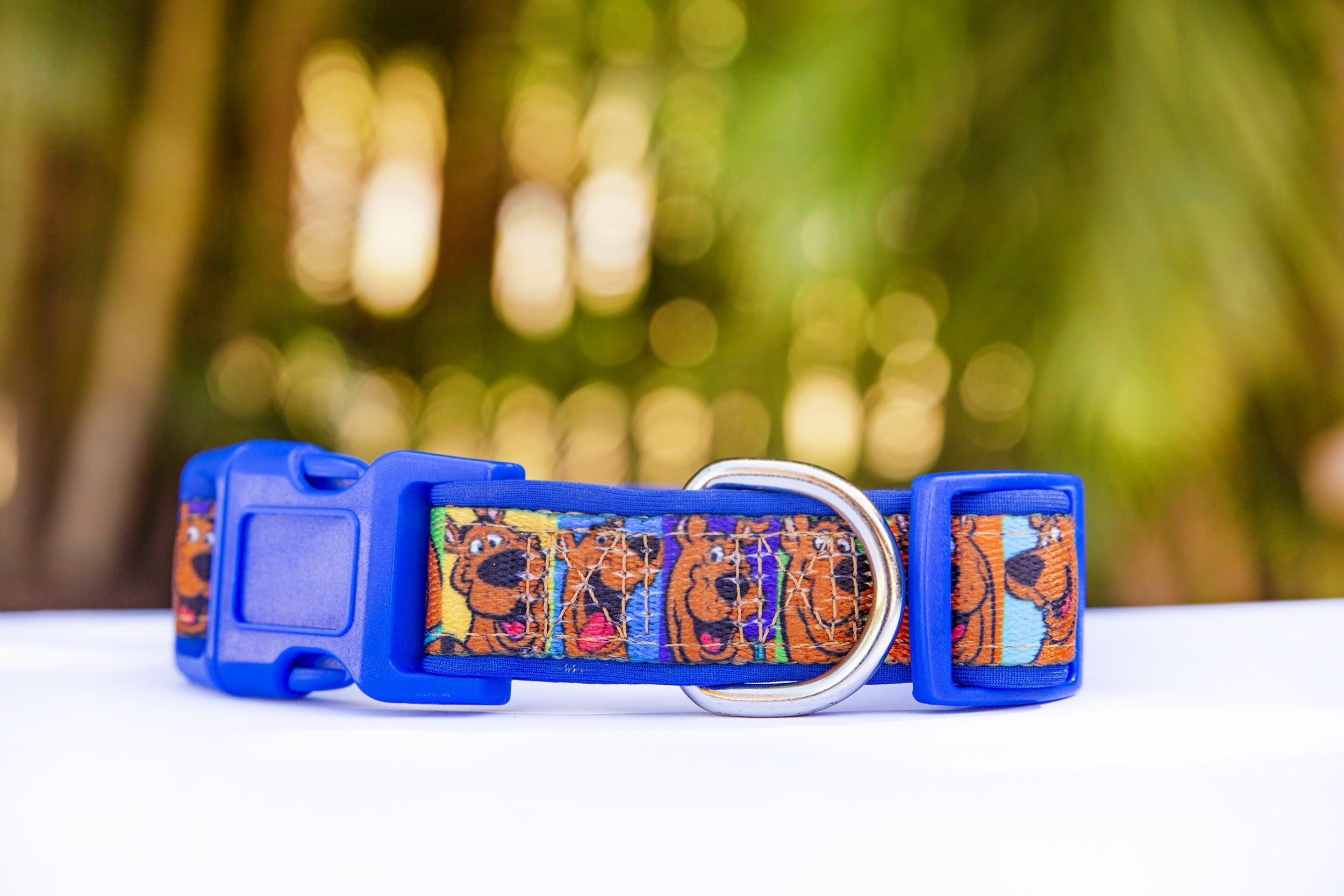 Scooby Doo Dog Collar (Premade) Blue-Dog Collar-Dizzy Dog Collars