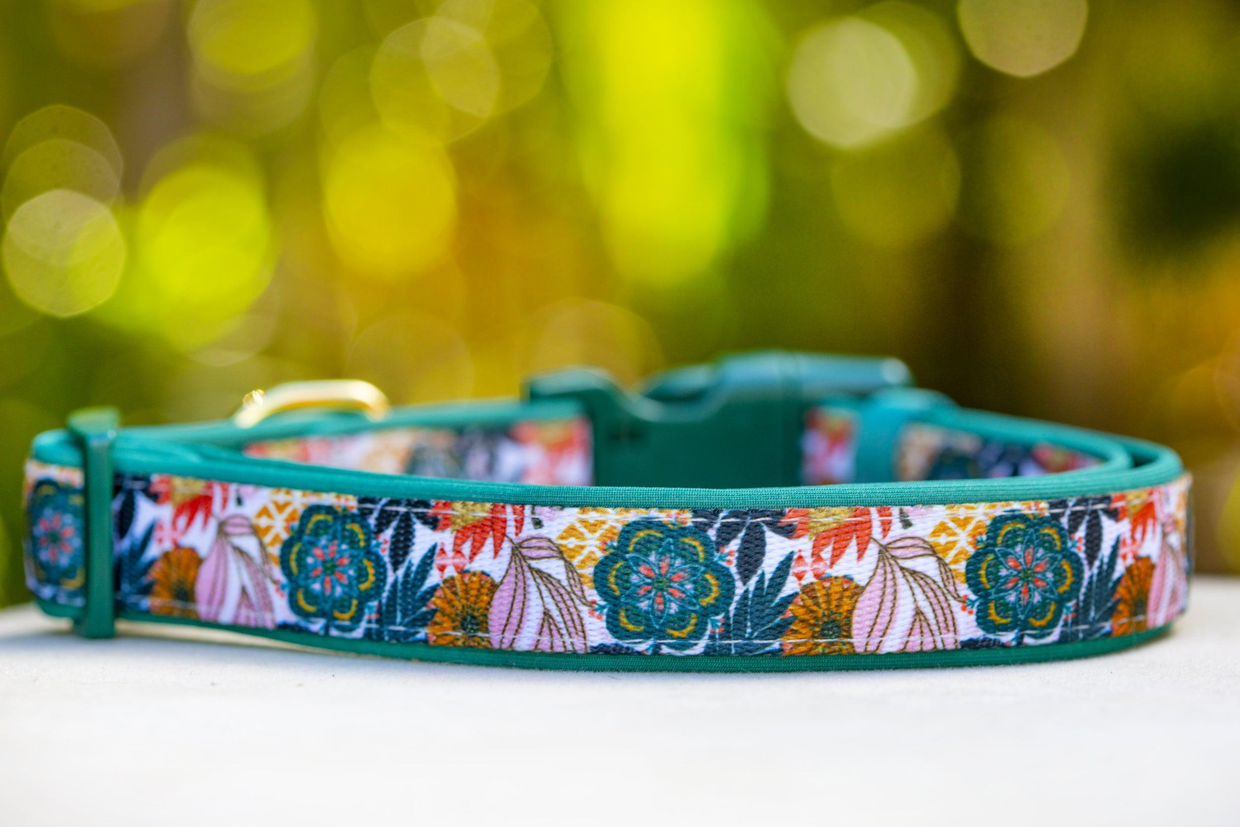 Bohemian Garden Dog Collar (Premade)-Dog Collar-Dizzy Dog Collars