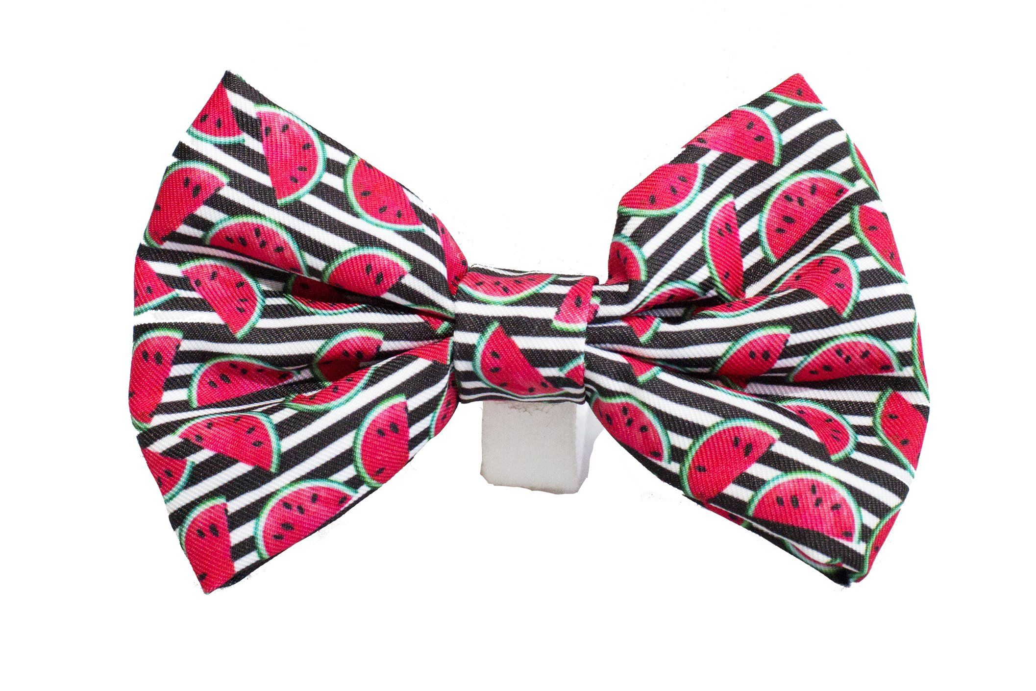 Watermelon Bow Tie - Small & Large-bow tie-Dizzy Dog Collars-Dizzy Dog Collars