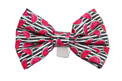 Watermelon Bow Tie - Small & Large