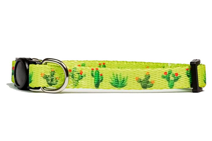 Cactus Cat Collar /Toy Breed Dog Collar-Dizzy Dog Collars-Dizzy Dog Collars