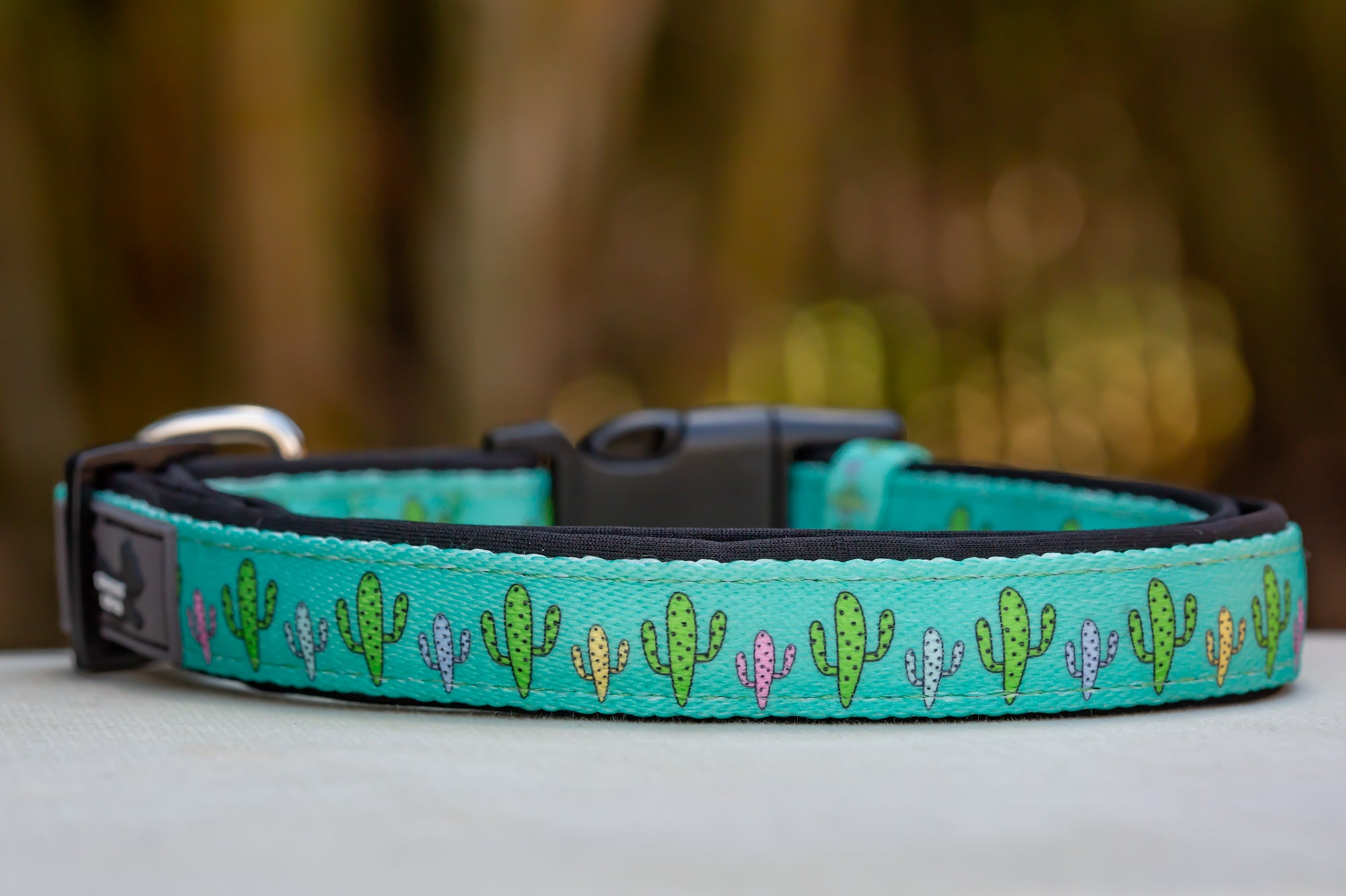 Cactus Dog Collar (Neoprene)-Dizzy Dog Collars-Dizzy Dog Collars