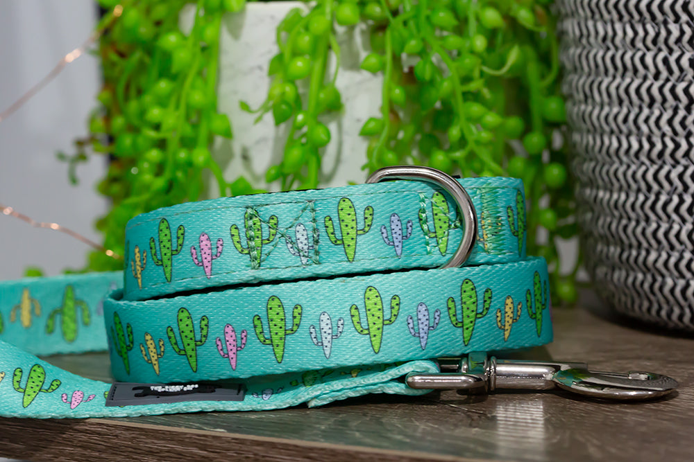 Cactus Dog Leash (Neoprene)-Dizzy Dog Collars