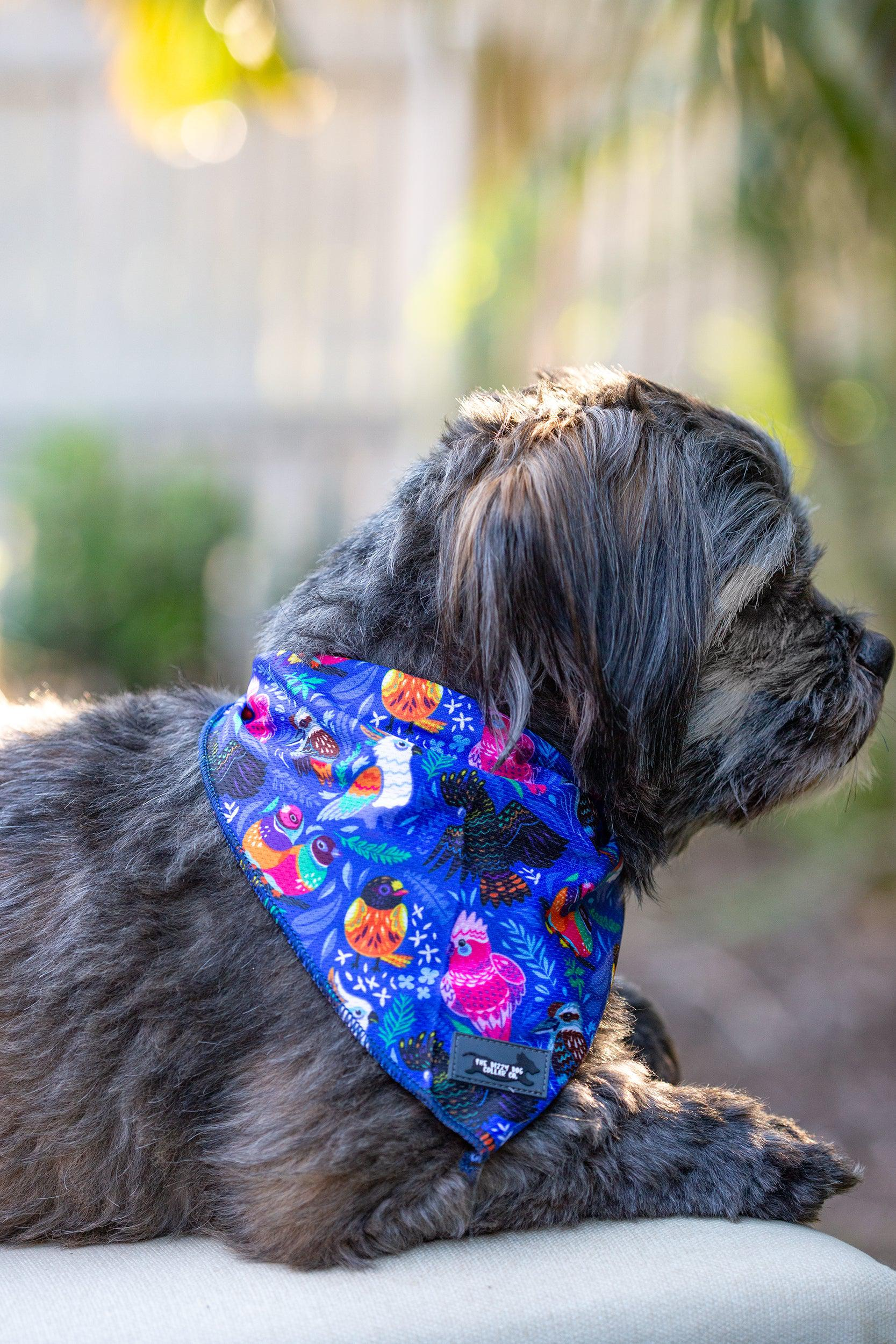 Dog Bandana - Tie Up Bandana - Aussie Birds-Dizzy Dog Collars