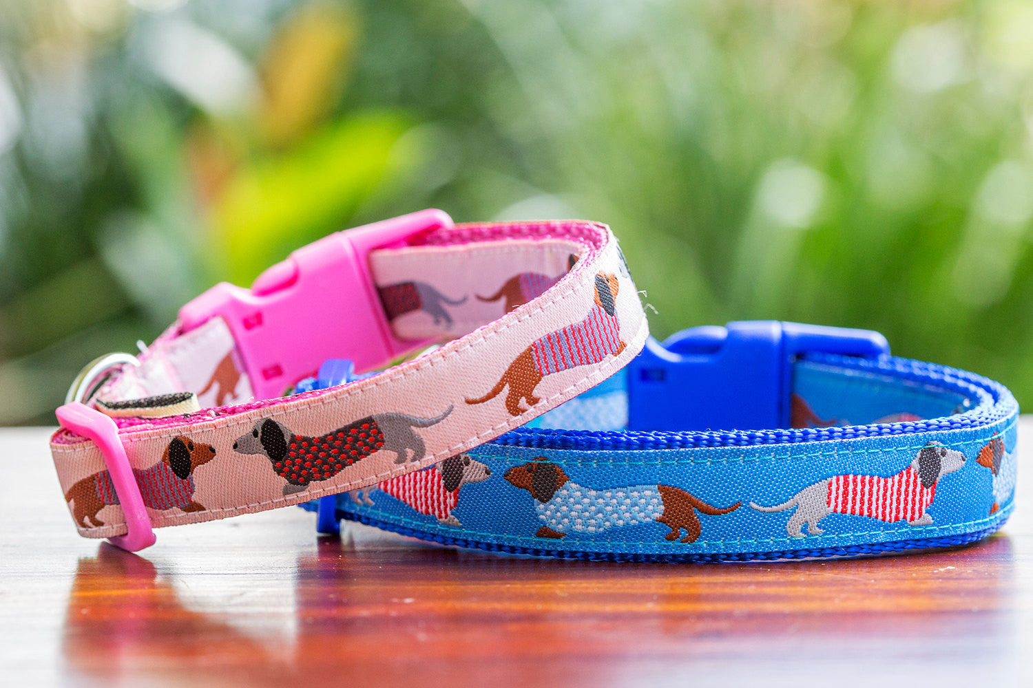 Dachshund Print Dog Collar XS-XL