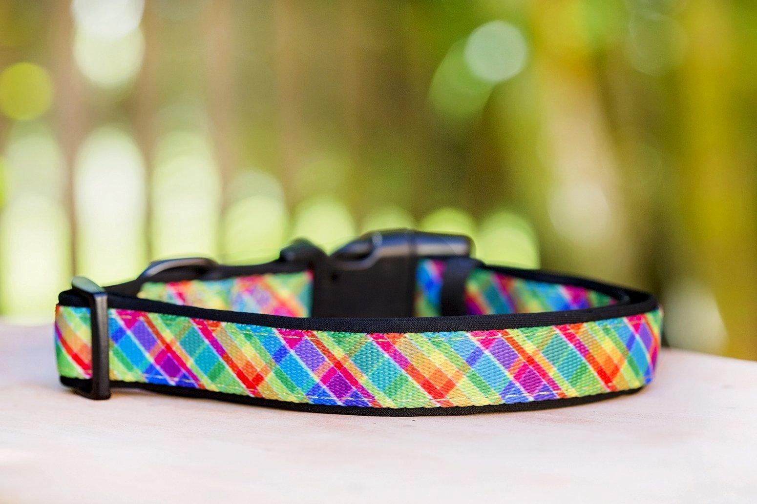 Candy Plaid Dog Collar (Neoprene)-Dog Collar-Dizzy Dog Collars-Small-Dizzy Dog Collars