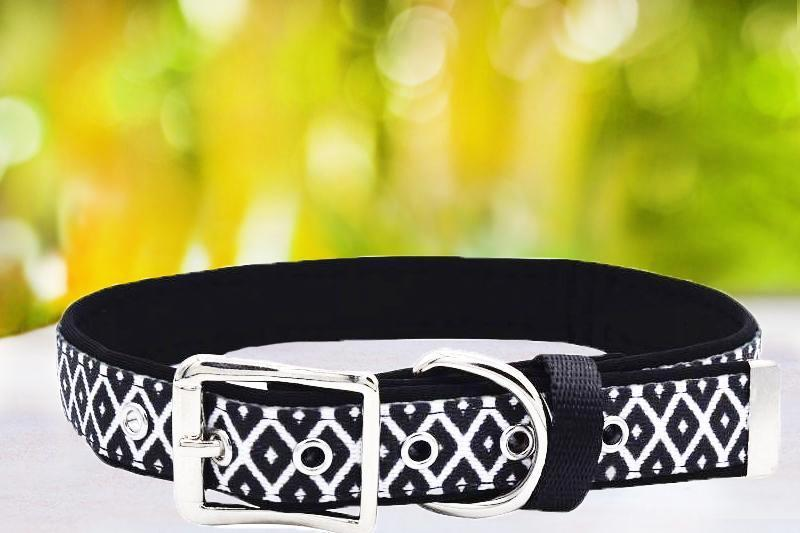 Coopers Classic - Belt Buckle Dog Collar-Dog Collar-Dizzy Dog Collars-Extra Small-Dizzy Dog Collars