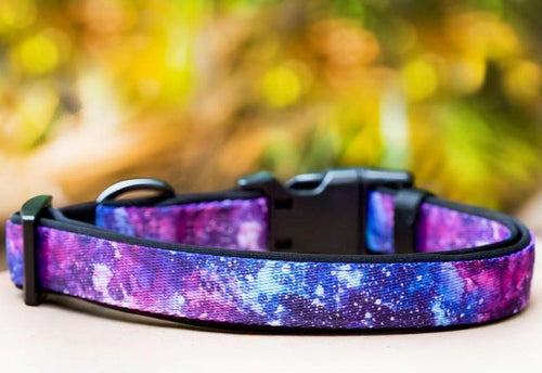 Galaxy Dog Collar (Premade)