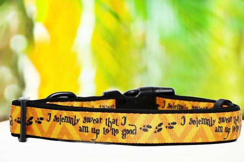 Harry Potter Dog Collar (Premade)