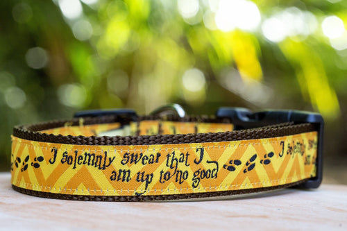 Harry Potter Dog Collar / XS-XL / Marauder's Map