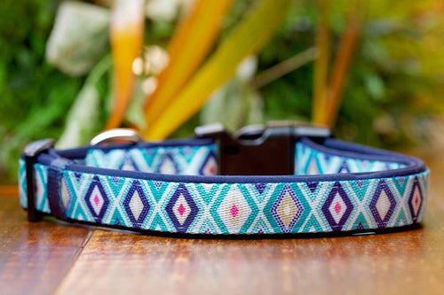 Jewel Dog Collar (Neoprene)