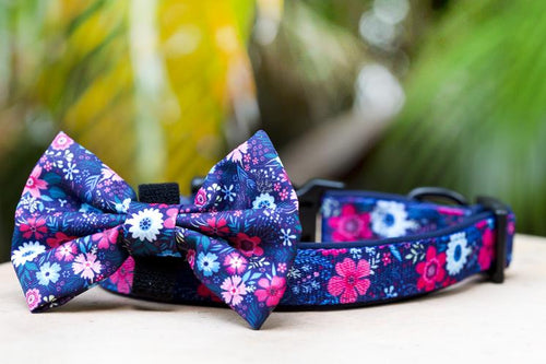 Navy Floral Dog Collar & (Detachable) Bow Tie
