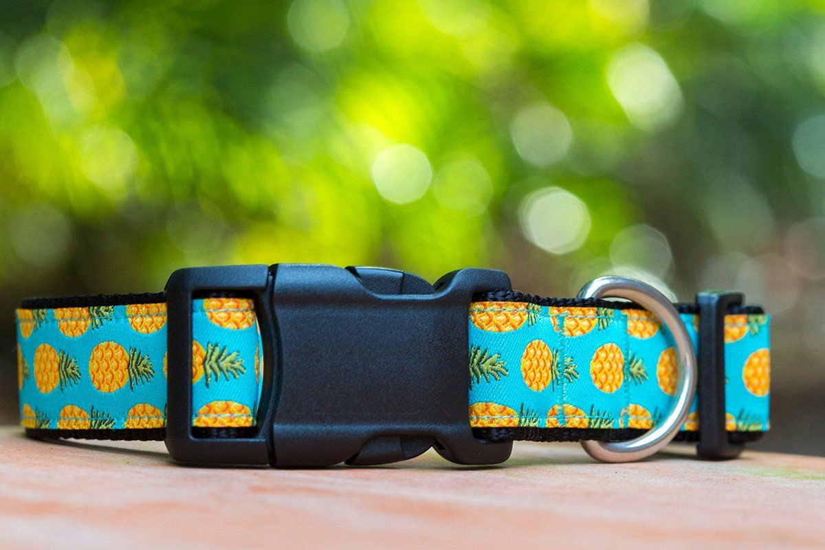pineapple dog collar, dog collars Australia, cute dog collar, unique dog collar, handmade dog collar, bowcollar and bow tie