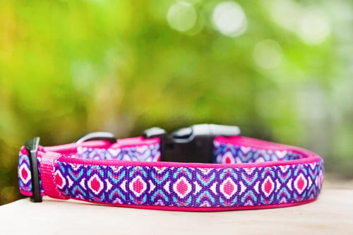 Pink Ikat Dog Collar (Neoprene)