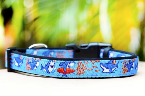 Sharks Dog Collar (Premade)
