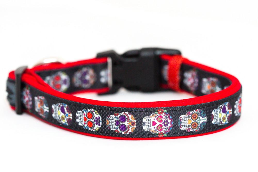 Sugar Skulls, Day of the Dead Dog Collar & Bow Tie-Dog Collar-Dizzy Dog Collars-Large-Dizzy Dog Collars