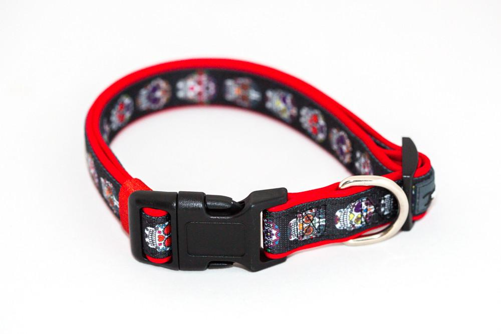 Sugar Skulls, Day of the Dead Dog Collar & Bow Tie-Dog Collar-Dizzy Dog Collars-Small-Dizzy Dog Collars