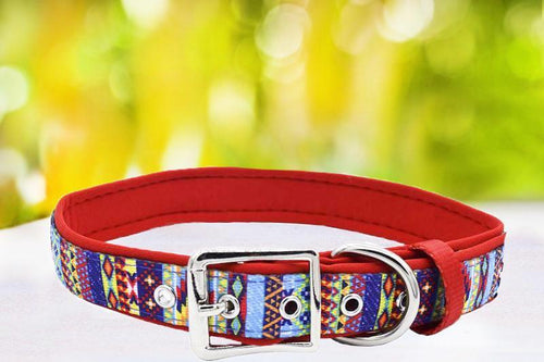 Summer Aztec - Belt Buckle Dog Collar