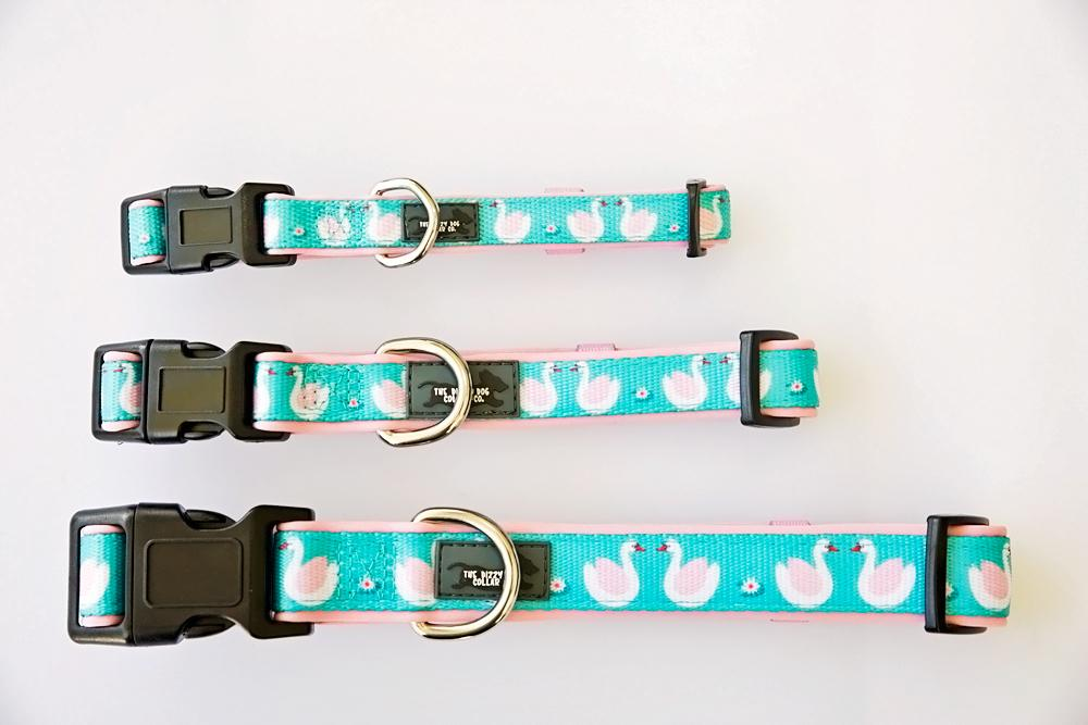 Swan Dog Collar (Neoprene)-Dizzy Dog Collars-Dizzy Dog Collars