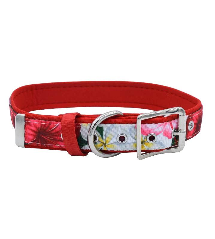 Tropical Hibiscus - Belt Buckle Dog Collar-Dog Collar-Dizzy Dog Collars-Extra Small (1.5cm Wide)-Dizzy Dog Collars