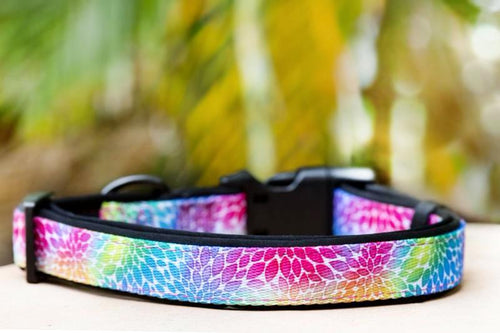 Watercolour Petals Dog Collar (Neoprene)