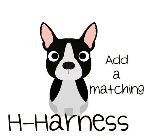 Dog Harness / H-Harness for Dogs (Handmade to order)