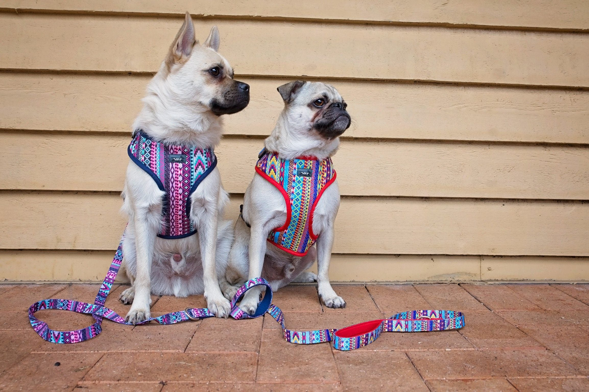 DOG HARNESS - Summer Aztec - Adjustable-Dizzy Dog Collars-Small-Dizzy Dog Collars