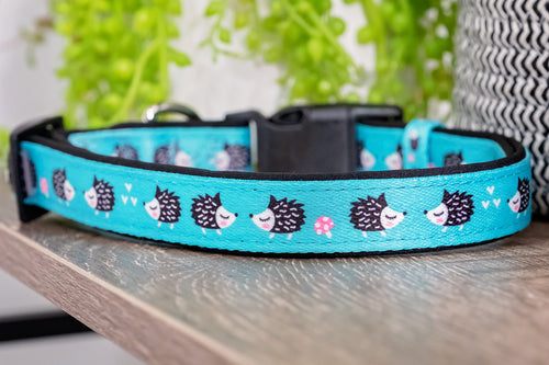 Echidna Dog Collar (Premade)