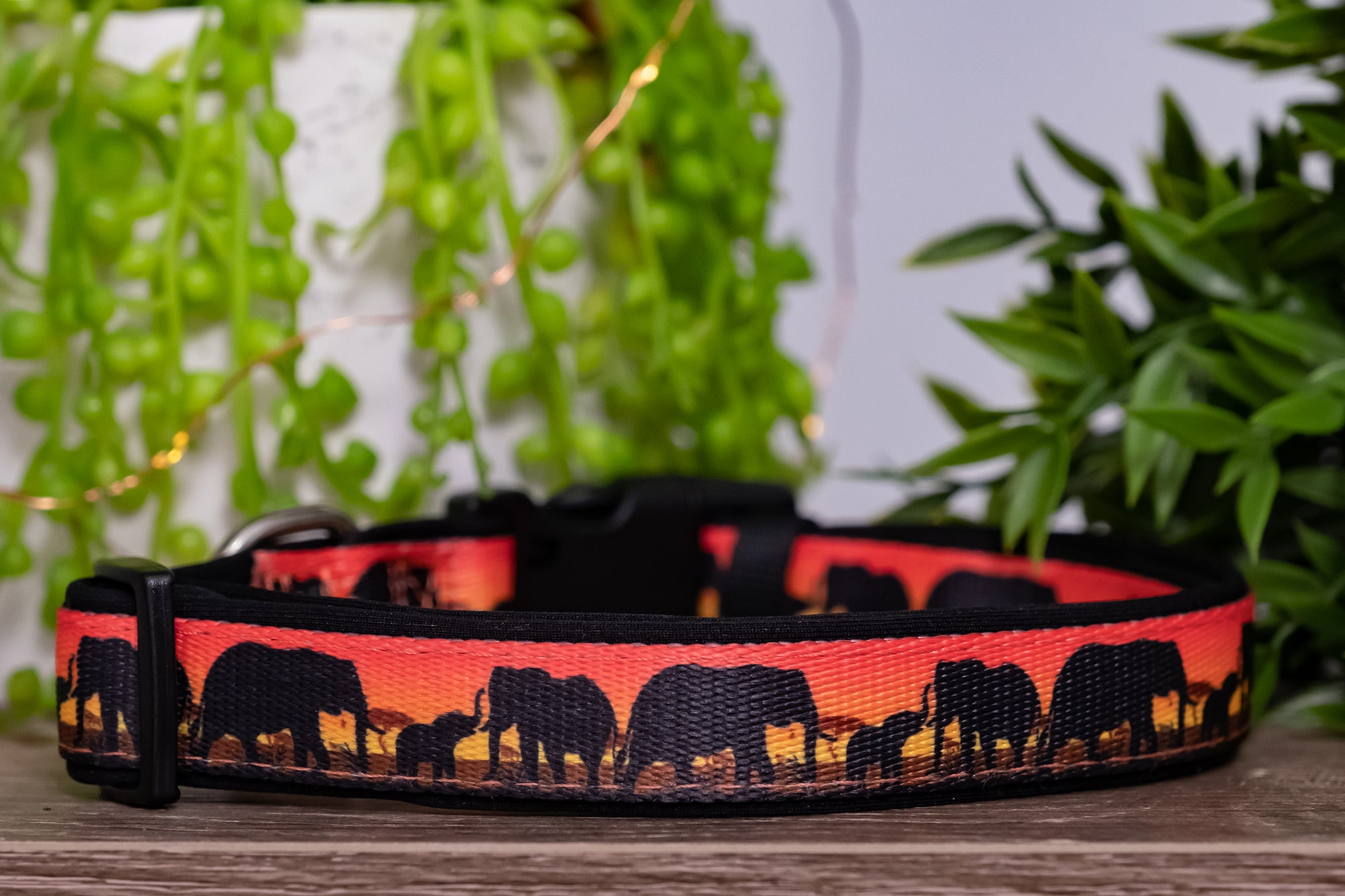 Sunset Elephants Dog Collar (With Neoprene Padding)-Dog Collar-Dizzy Dog Collars