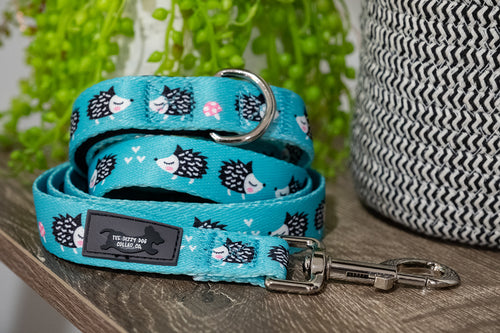 Eric the Echidna  Dog Leash (Premade)