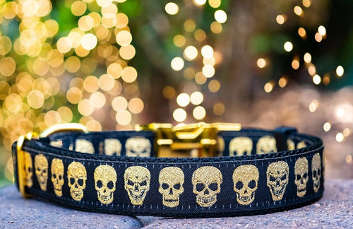 *Currently unavailable whilst we catch up on handmade orders* Skulls Dog Collar / Gold Skulls Day of the Dead Dog Collar (Handmade to order)
