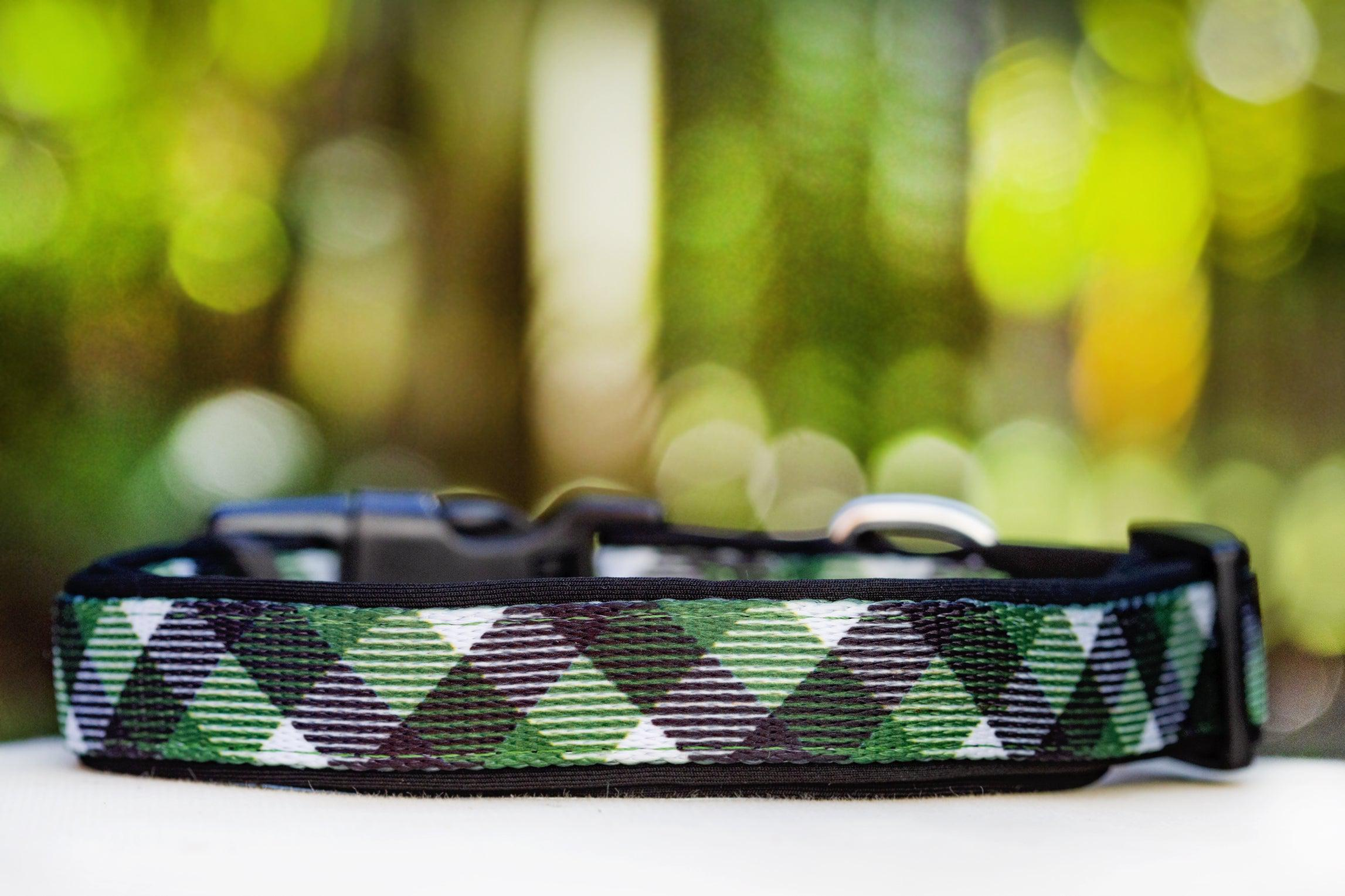 Green Plaid Dog Collar (Premade)-Dog Collar-Dizzy Dog Collars