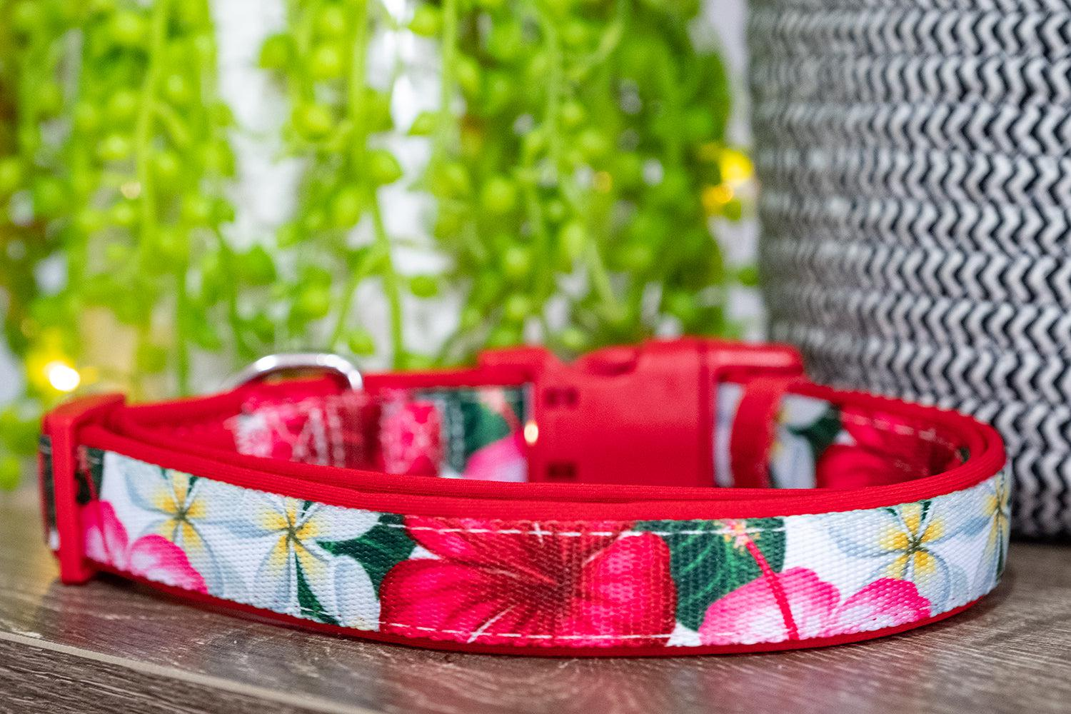 Hibiscus Dog Collar (Neoprene)-Dizzy Dog Collars-Dizzy Dog Collars