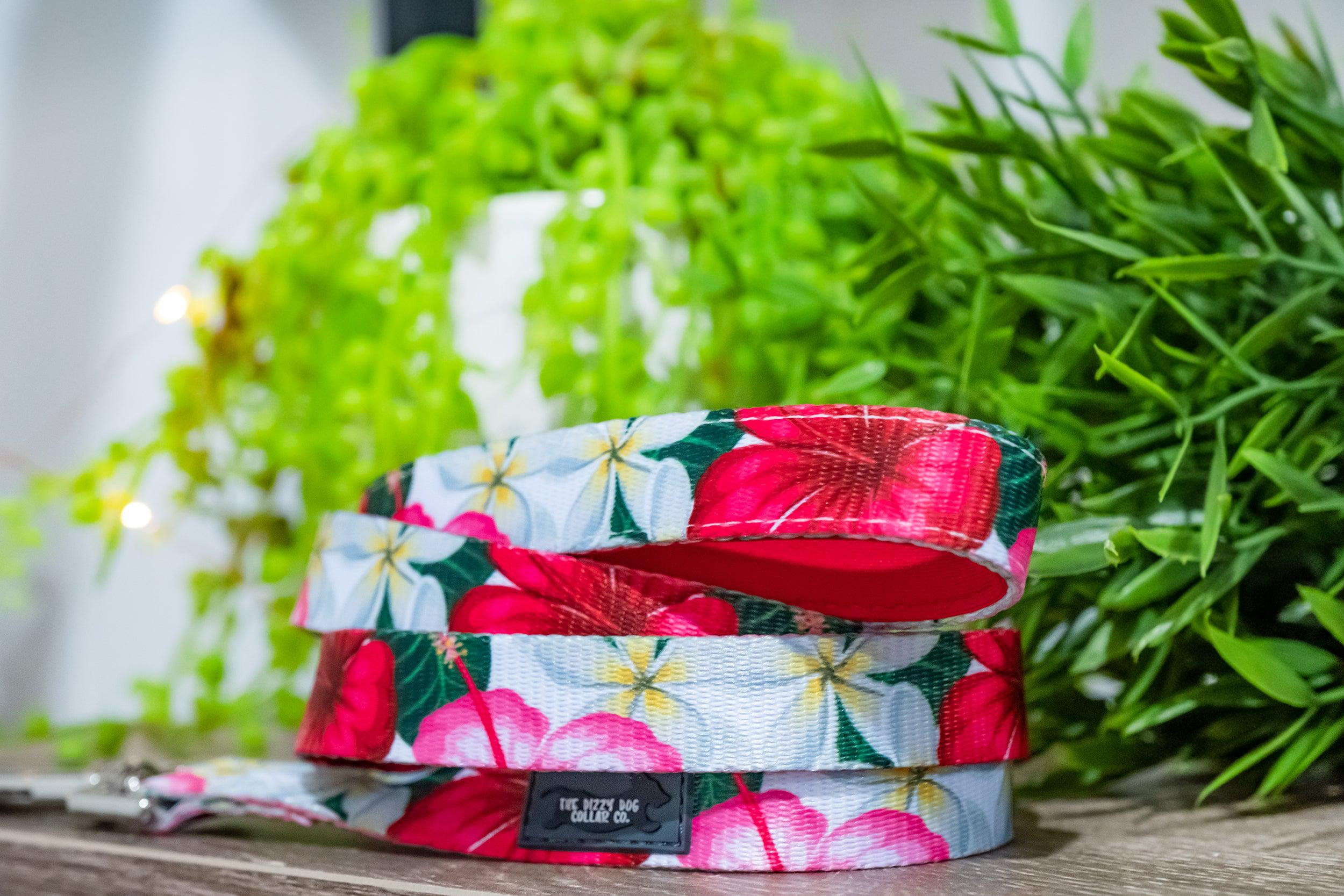 Tropical Hibiscus Dog Leash-Dizzy Dog Collars