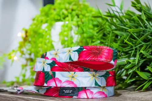Tropical Hibiscus Dog Leash (Premade)