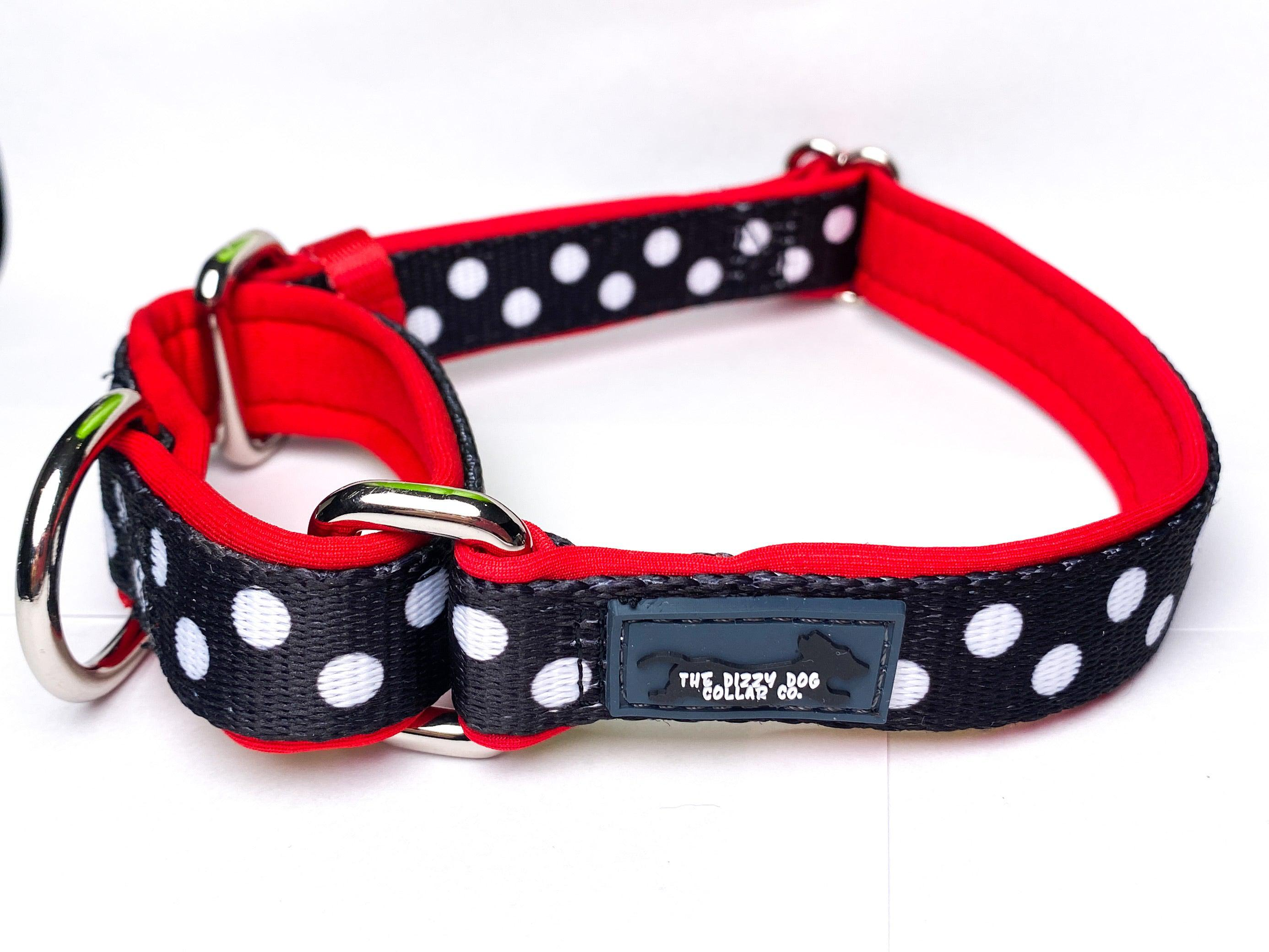 Martingale Dog Collar - Spotty Dox-Dog Collar-Dizzy Dog Collars