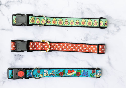 SALE COLLARS - X-Large, 2.5cm Wide