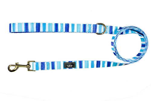 Artist Palette (Blue) - Dog Leash (Premade)