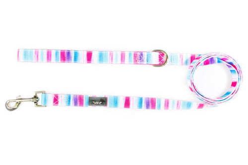Artist Palette Pink - Dog Leash (Premade)
