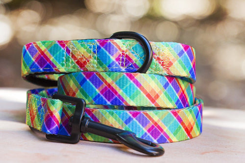 Dog Leash - Candy Plaid