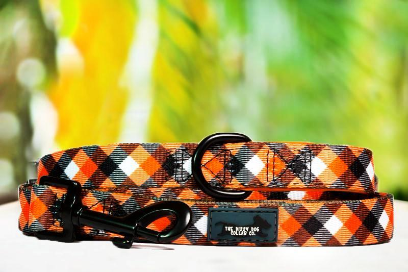 Dog Leash - Orange Plaid-Dizzy Dog Collars-Dizzy Dog Collars