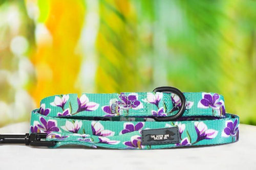 Frangipani - Dog Leash (Premade)