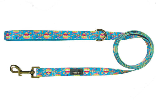 Hot Air Balloon - Dog Leash