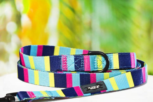 Multicolour Stripes - Dog Leash (Premade)