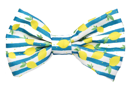 Lemons Bow Tie  - Small & Large