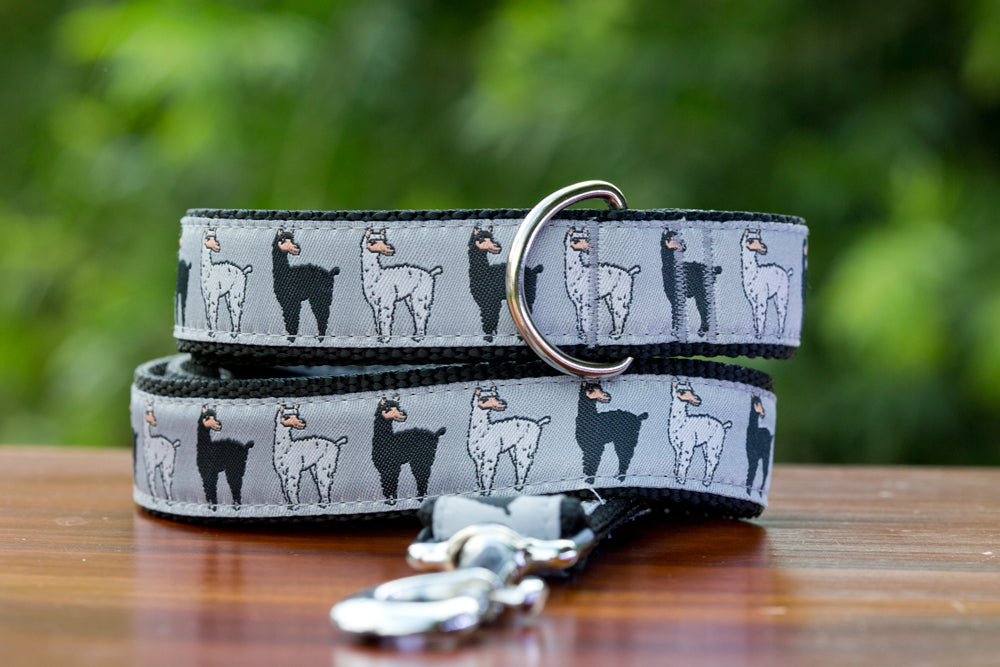 Llama Rama Dog Leash