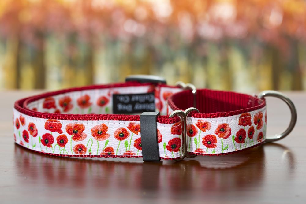 Make your collar a martingale-Dizzy Dog Collars-Dizzy Dog Collars