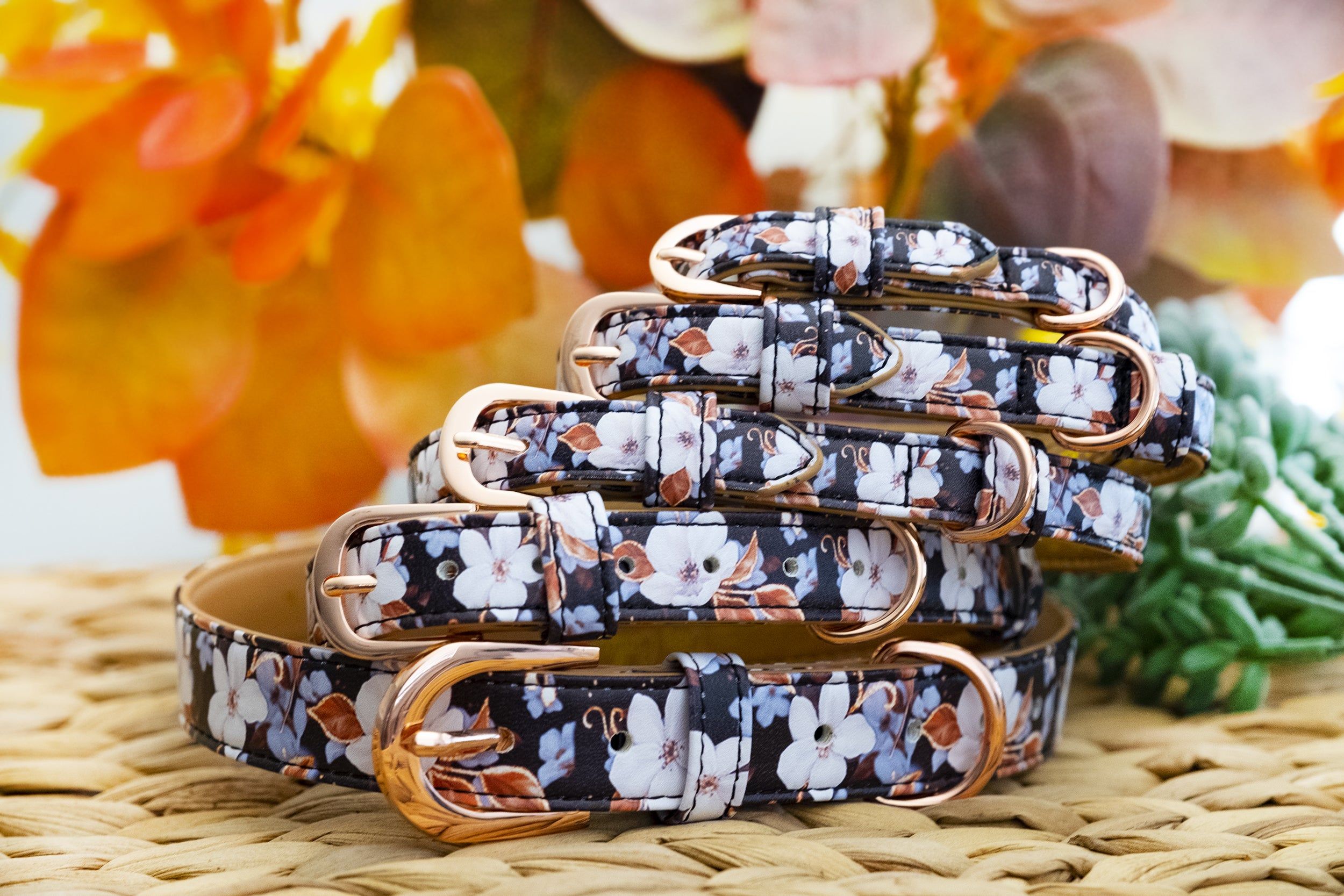 Midnight Cherry Blossoms: Rose Gold, Vegan Leather Dog Collar (Premade)-Dog Collar-Dizzy Dog Collars