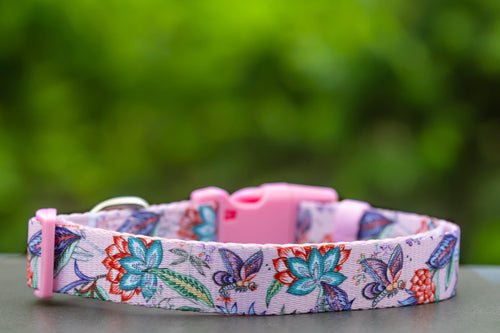 "Molly & Polly Dog Collar ""Value Range"""