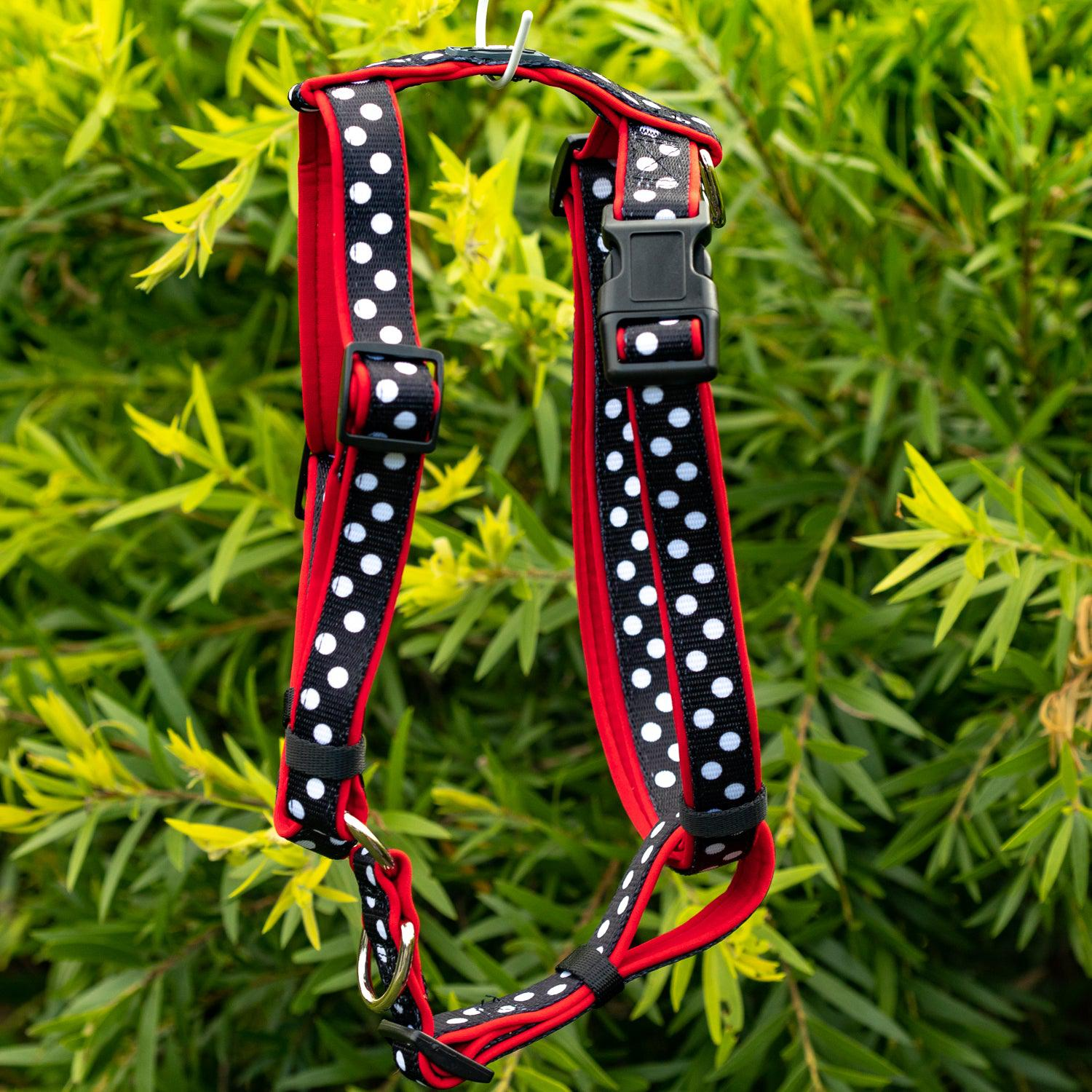 DOG HARNESS, Spotty Dox- Padded H-Harness, With Front & Back Attachment-Harness-Dizzy Dog Collars